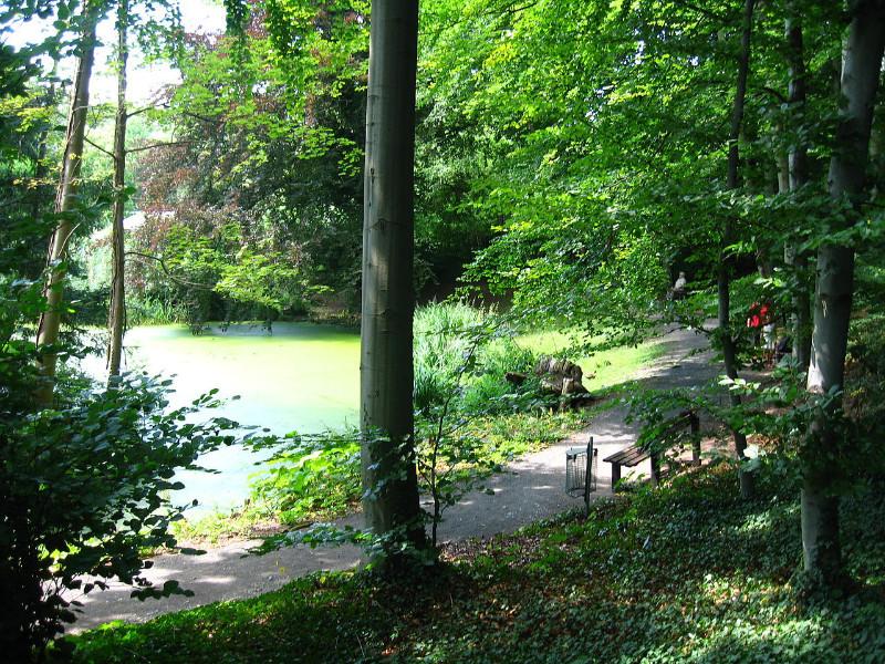 1280px-Botanischer_Garten_Gießen_Teich